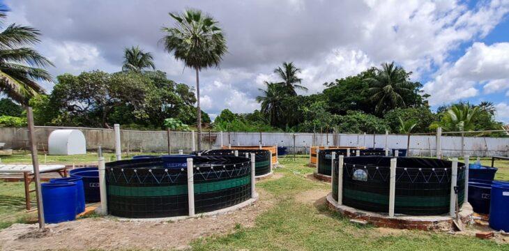 Secretaria da Agricultura entrega quintais agroecológicos no litoral nesta sexta (25)