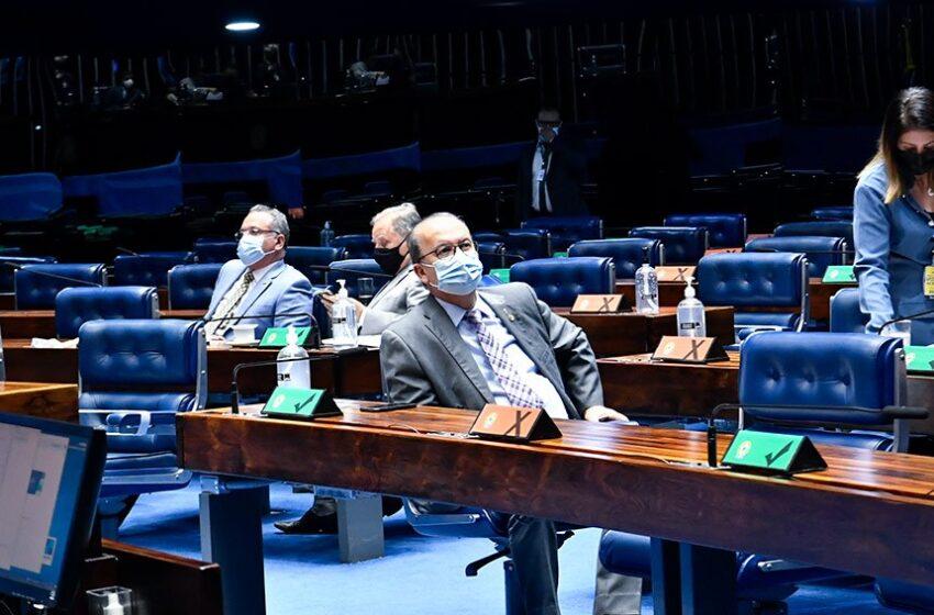 Senado mantém suspensão da prova de vida do INSS durante pandemia
