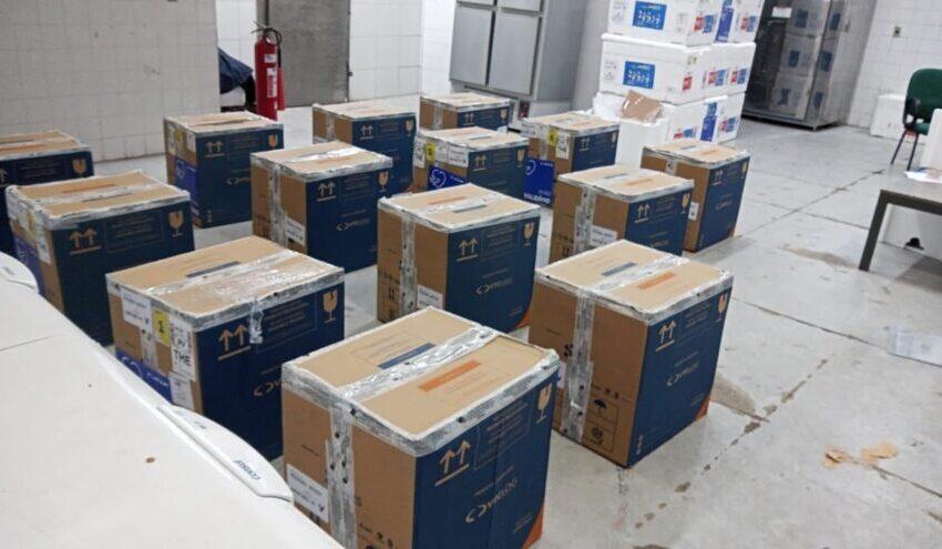 Piauí recebe 39.500 doses de FioCruz/AstraZeneca, nesta segunda-feira (20)