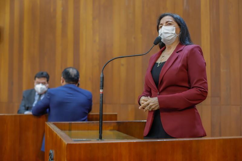 Deputada Teresa propõe reunião com Governador sobre redução do ICMS