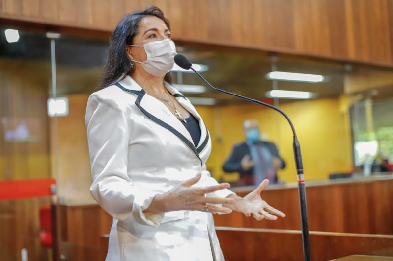 Deputada Teresa Britto propõe lei criando o Projeto Quintais Verdes no Piauí